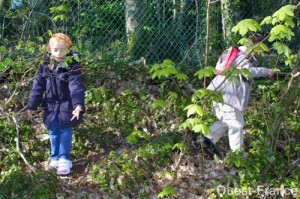 looking for eggs in the park ( Bois de keroual, Brest, France)